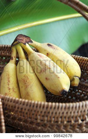 Ripe Banana In Basket
