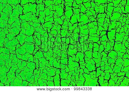 toxic green background
