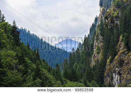 beautiful wild mountain landscape in the Carpathian Mountains, Romania