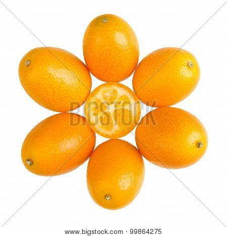 Oval Kumquats Forming A Sun Symbol On White Background