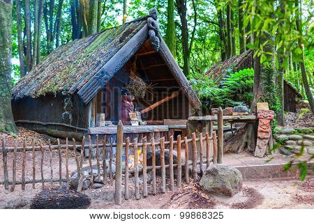Maori tribes traditional dwelling. New Zealand