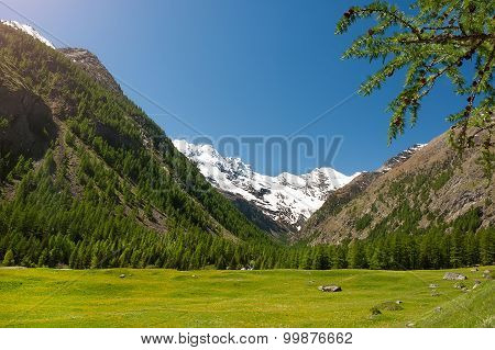 Panoramic View Of The Mountains Of The Gran Paradiso Park, Italy