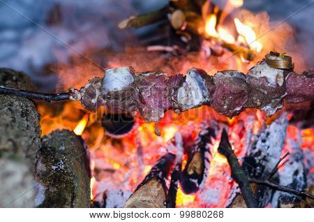 Skewers Of Beef, Pork Cooked On A Campfire