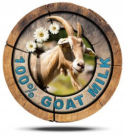 picture of goat horns  - Wooden round icon or symbol with a head of horned goat three daisy flowers and text 100  - JPG