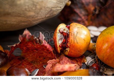 A table of autumn fruits. The fruits of autumn. Pumpkins, pomegranates, chestnuts, apples