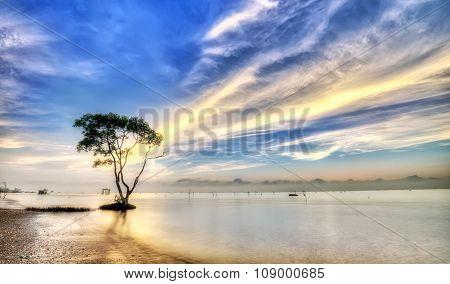 Cork with cloudy dawn path