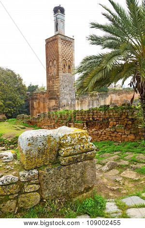 In Morocco Africa The Old  Monument And Site