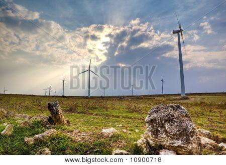 campos y la turbina de viento