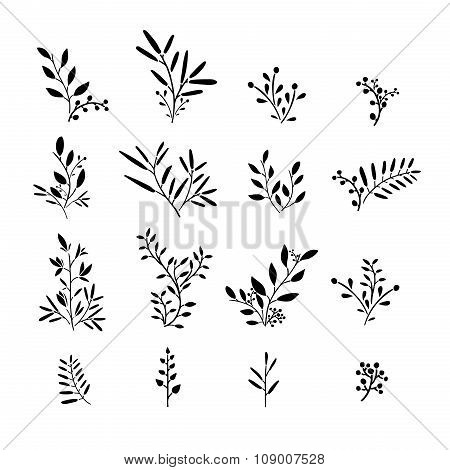 Set of monochrome plant elements. Bouquets, kits, ornaments of grass, twigs, leaves and berries. Sim
