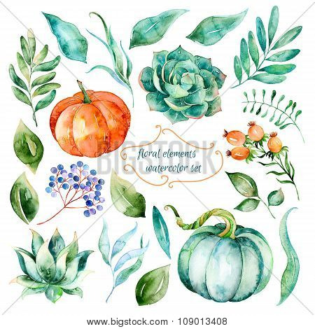 Set of high quality hand painted watercolor separate elements for your own design