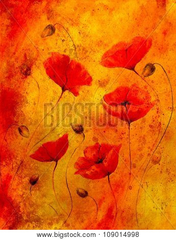 Red poppy on color background. Red poppies. Red flower on abstract color background and spots.