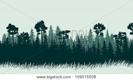 Horizontal Illustration Of Forest With Grass.