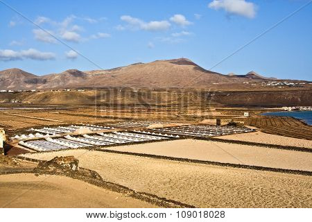 Saline From Janubio, Lanzarote, Spain