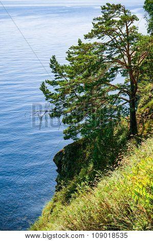 Baikal Lake's Coast