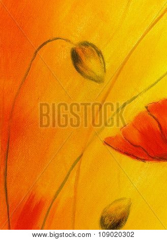 poppy painting on orange background. Poppy  Flower on abstract color background