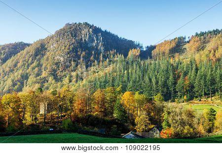 Autumn Landscape Cumbria, England