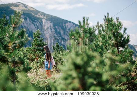 Long Hair Woman Travel In Spruce Forest