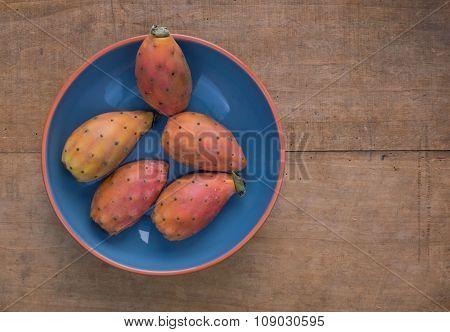 Opuntia ficus-indica - prickly pear