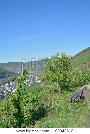 Ediger-Eller,Mosel Valley,Germany