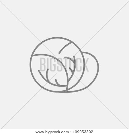 Cabbage line icon for web, mobile and infographics. Vector dark grey icon isolated on light grey background.