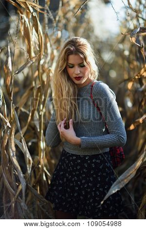 Blonde Young Woman In A Cornfield Wearing Sweater And Skirt