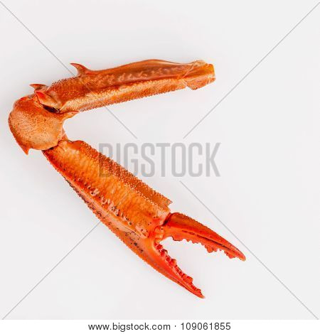 Boiled Crab Claws Isolated On White Background For Crabs And Seafood Menu.