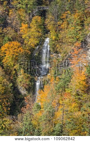 The Autumn Colors Of Letchworth State Park