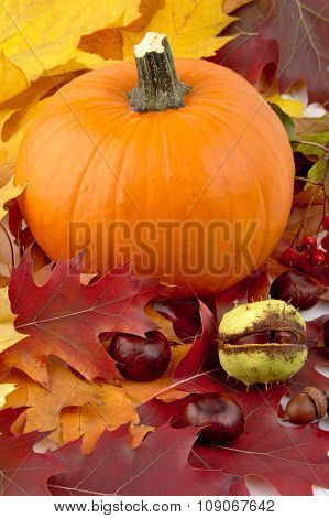 Decoration Of Pumpkin With Autumn Leaves For Thanksgiving Day