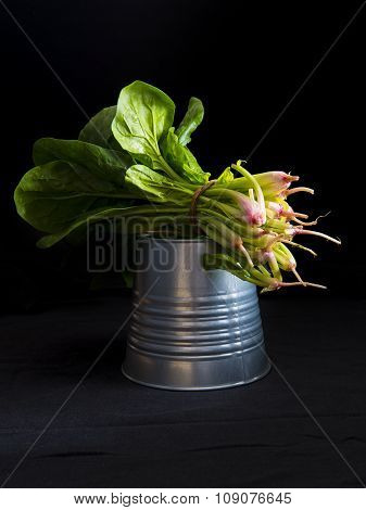 Bunch Of Fresh Spinach