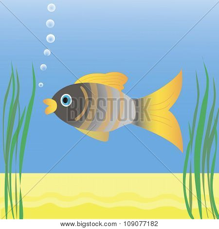 Fish swimming in blue water