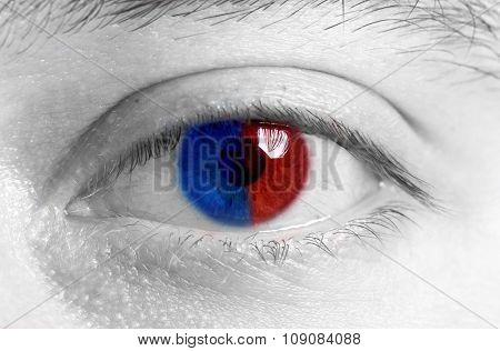 Iris with flag of France
