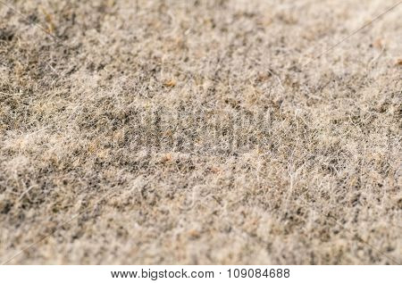 detailed texture of a wool fabric, shallow dof