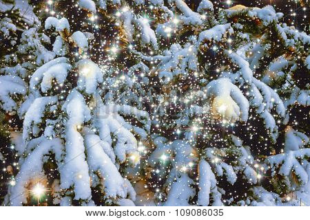 Winter snow scene with magic light