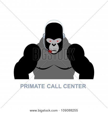 Primate Call Center. Monkey And Headset. Gorilla Responds To Phone Calls. Customer Service From Back