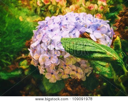 Digital painting of hortensia flower