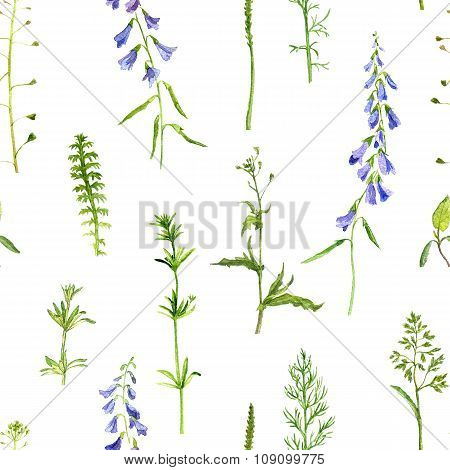 seamless pattern with herbs and flowers