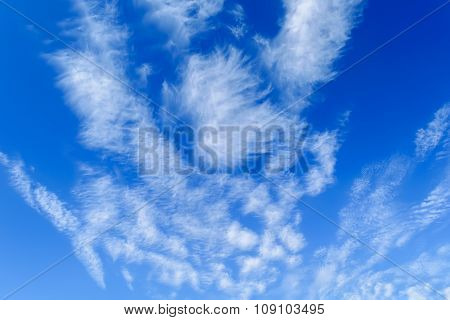 Receding Cirrus Clouds In Blue Sky