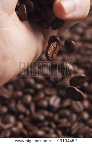 Part of hand scattering roasted coffee beans to others