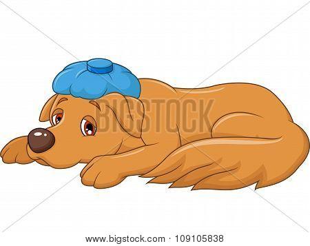 Cartoon sick dog with ice bag, isolated on white background