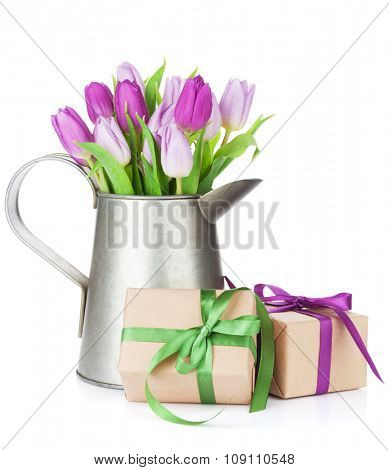Purple tulip bouquet in watering can and gift boxes. Isolated on white background