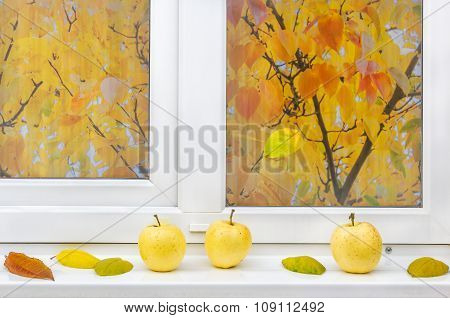Yellow Apples And Autumn Leaves On A Windowsill