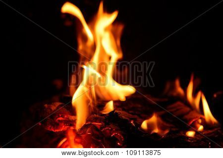 Burning Fire In Fireplace