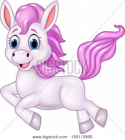 Cute pony horse running isolated on white background
