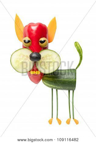 Vegetable Cat On Isolated Background