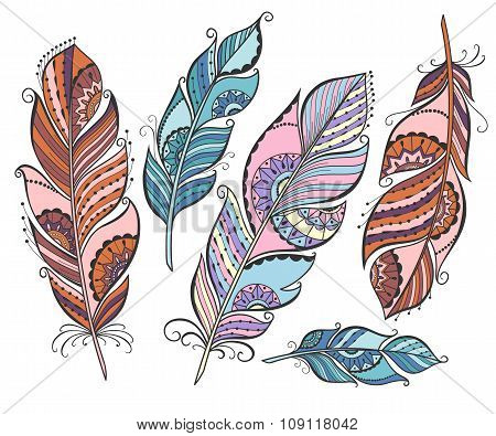 Vector set of ethnic colored feathers