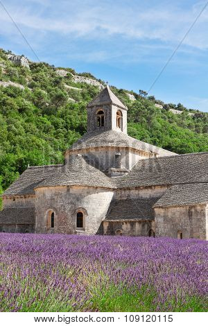 Abbey Senanque and Lavender field, France