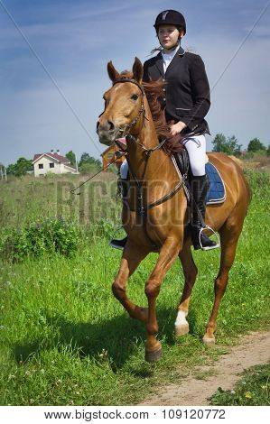 Beautiful Girl Jockey Ridding Horse In A Field