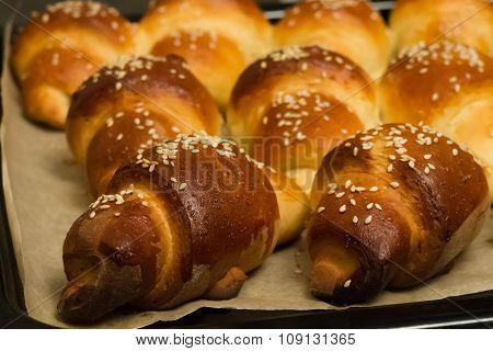 bun with sesame seeds  on a pan