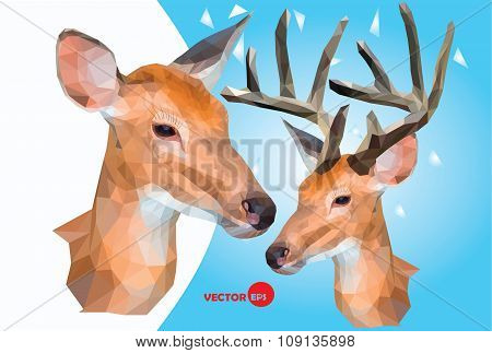 Two Deer, Male And Female Wild Animals,head With Horns