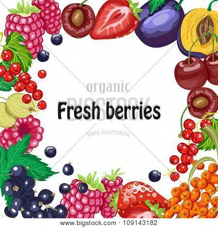 Vector Background With Garden Berries